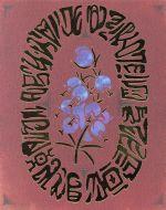 メアリと魔女の花 コレクターズ・エディション(数量限定商品)(4K ULTRA HD+Blu-ray Disc)(三方背ケース、ガイドブック、縮小版台本、アート付)(4K ULTRA HD)(DVD)