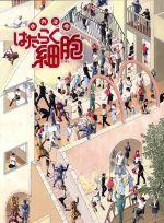 体内活劇「はたらく細胞」(完全生産限定版)(Blu-ray Disc)(三方背ケース、DVD1枚、ブックレット付)(BLU-RAY DISC)(DVD)