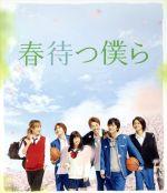 春待つ僕ら プレミアム・エディション(Blu-ray Disc)(BLU-RAY DISC)(DVD)