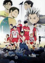ハイキュー!! 陸 VS 空(通常)(DVD)